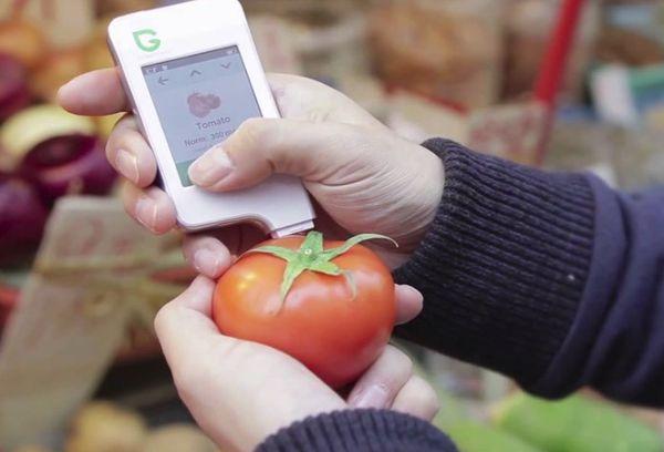 Измерение нитратов в помидоре